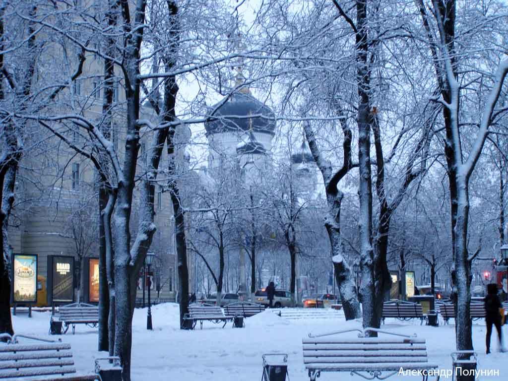 Зимний пейзаж фотографии природных